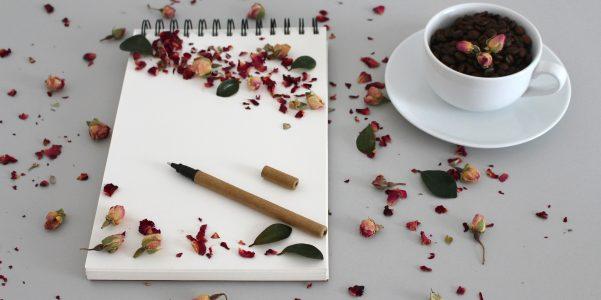 Tina Celentano – Writer